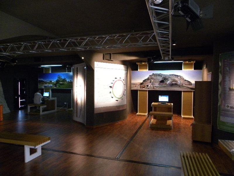 interno museo dinosauri 01